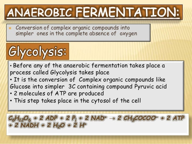 Difference between aerobic and anaerobic fermentation pdf
