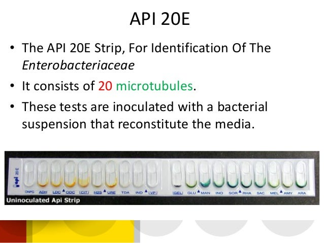 Api 50 ch biomerieux pdf