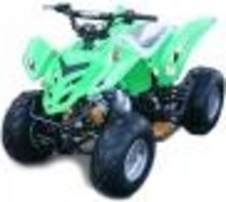 2008 daymak 250cc manual pdf