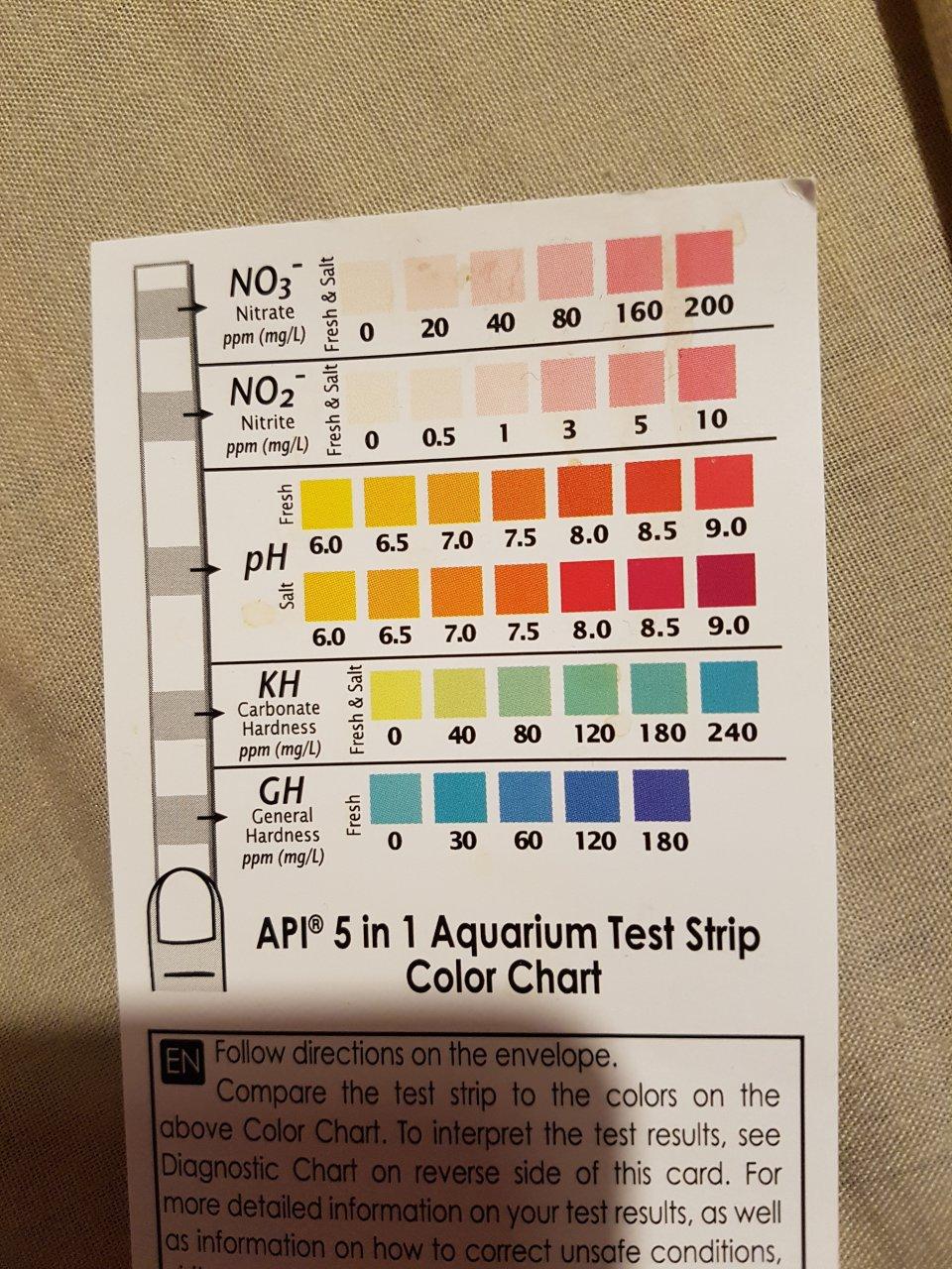 Wa2 safe guide swim test