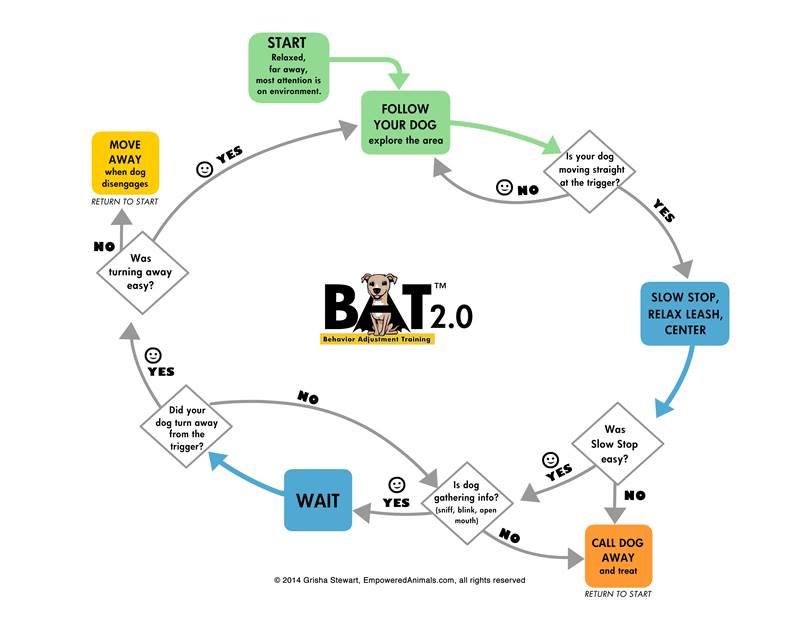 Behavior adjustment training 2.0 pdf